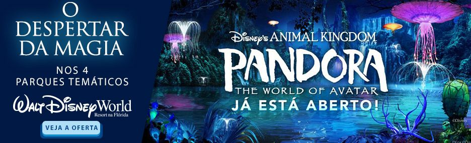 Banner Main - Walt Disney World